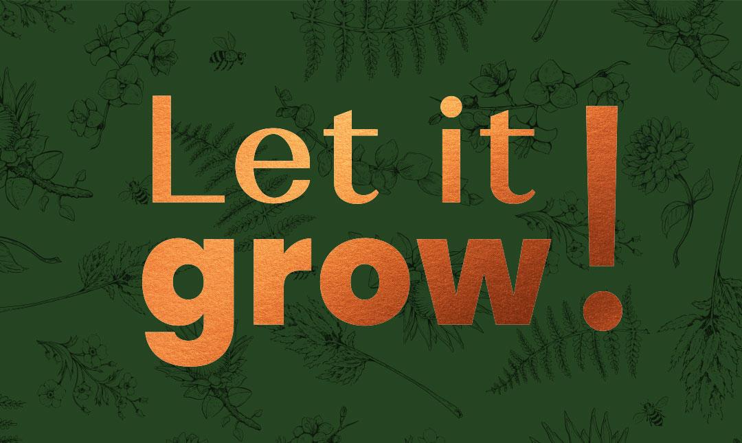 DODEL Let it grow