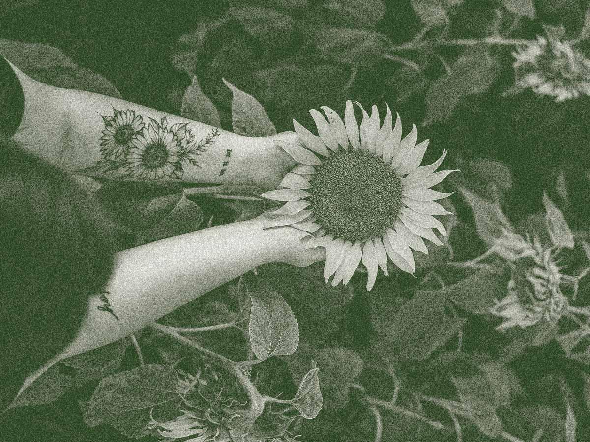 Dodel Sonnenblume Header