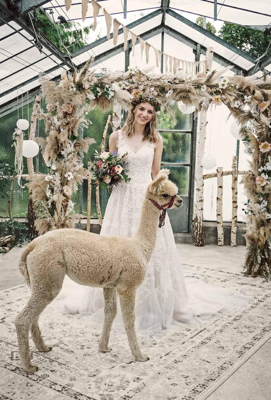 DODEL Hochzeit